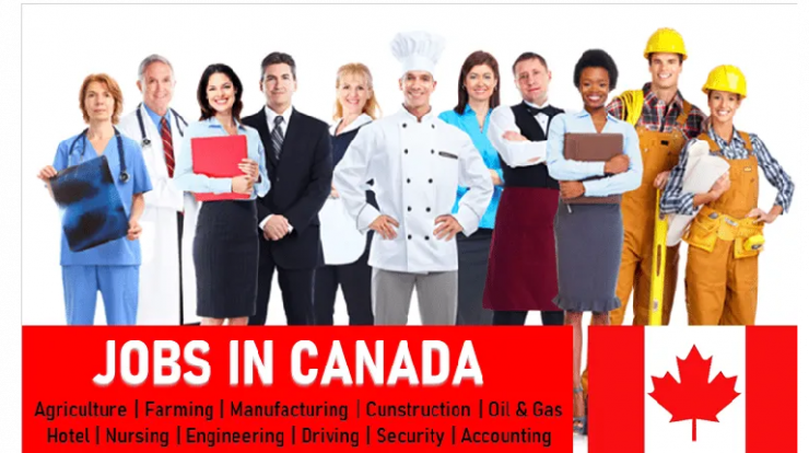 Exciting Jobs in Canada for Foreigners | 1000+ Vacancies